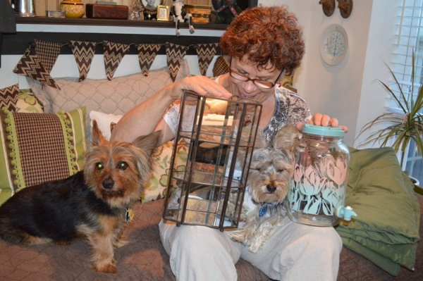 Mom, Dino [brown], Markey [Gray] and yard sale treasures